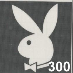 szablon TATTOO 300